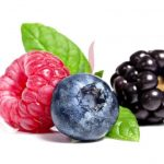 forestfruit