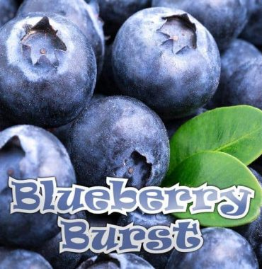 Blueberry - 10ML Qcigs E-Liquid (PG)