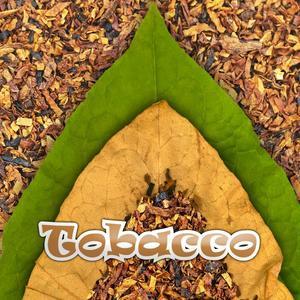 Tobacco - 10ML Qcigs E-Liquid (PG)